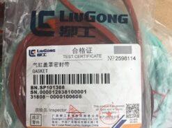 Gioang dàn cò SC9D220G2B1